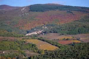 Cassagnoles en automne