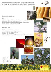 planche explicative n°3 de la Maison de l'abeille à Cassagnoles