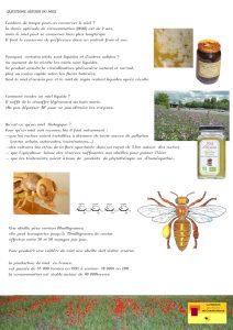 planche explicative n°5 de la Maison de l'abeille à Cassagnoles