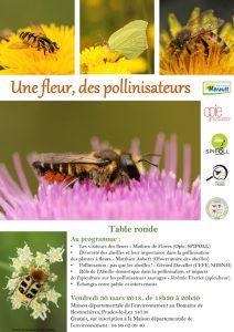 Table ronde, une fleur et des pollinisateurs