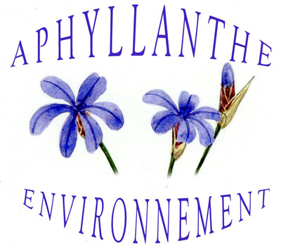 Logo Aphyllante Environnement